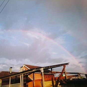 Сережа впервые увидел радугу