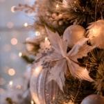 Фотостудия Bloom зал Флора. Новогодний интерьер 2019
